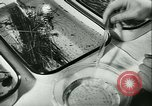 Image of German laboratory mosquito experiments Berlin Germany, 1943, second 38 stock footage video 65675020606