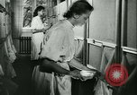 Image of German laboratory mosquito experiments Berlin Germany, 1943, second 54 stock footage video 65675020606