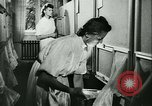Image of German laboratory mosquito experiments Berlin Germany, 1943, second 56 stock footage video 65675020606