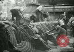 Image of Liberation of Paris Paris France, 1944, second 15 stock footage video 65675020659