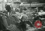 Image of Liberation of Paris Paris France, 1944, second 16 stock footage video 65675020659