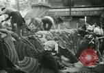 Image of Liberation of Paris Paris France, 1944, second 17 stock footage video 65675020659