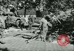 Image of Liberation of Paris Paris France, 1944, second 22 stock footage video 65675020659