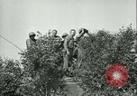 Image of United States troops Cherence Le Roussel France, 1945, second 20 stock footage video 65675020666