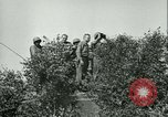 Image of United States troops Cherence Le Roussel France, 1945, second 21 stock footage video 65675020666
