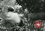 Image of United States troops Cherence Le Roussel France, 1945, second 46 stock footage video 65675020666