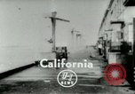 Image of Sea gull Los Angeles California USA, 1953, second 2 stock footage video 65675020697