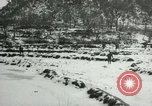 Image of Republic of Korea tank units Korea, 1953, second 42 stock footage video 65675020707