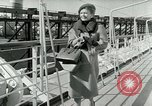 Image of Josef bags New York United States USA, 1953, second 6 stock footage video 65675020715