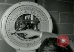 Image of Young boxers New York City USA, 1953, second 6 stock footage video 65675020723