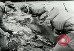 Image of Cold War aerial attack over Germany Germany, 1953, second 26 stock footage video 65675020724