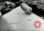 Image of Cold War aerial attack over Germany Germany, 1953, second 42 stock footage video 65675020724