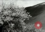 Image of Dalai Lama Tibet, 1959, second 53 stock footage video 65675020792