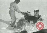 Image of Byrd Expedition Antarctica, 1929, second 40 stock footage video 65675020800