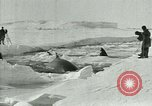 Image of Explorers Antarctica, 1929, second 38 stock footage video 65675020807