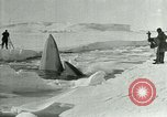 Image of Explorers Antarctica, 1929, second 49 stock footage video 65675020807