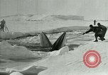 Image of Explorers Antarctica, 1929, second 54 stock footage video 65675020807
