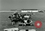 Image of World War II homefront effort in Texas Texas United States USA, 1945, second 10 stock footage video 65675020832
