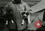 Image of Alaskan village Alaska USA, 1915, second 33 stock footage video 65675020847
