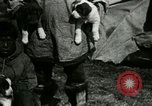 Image of Alaskan village Alaska USA, 1915, second 37 stock footage video 65675020847