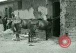 Image of French Foreign Legion troops China, 1945, second 31 stock footage video 65675020891