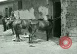 Image of French Foreign Legion troops China, 1945, second 32 stock footage video 65675020891