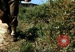 Image of Individual concealment United States USA, 1942, second 15 stock footage video 65675020986