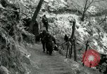 Image of 40th Infantry Division Seoul Korea, 1953, second 13 stock footage video 65675020990