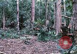Image of 1st Air Cavalry Division Cambodia, 1970, second 21 stock footage video 65675021064