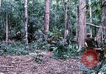Image of 1st Air Cavalry Division Cambodia, 1970, second 24 stock footage video 65675021064