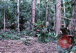 Image of 1st Air Cavalry Division Cambodia, 1970, second 25 stock footage video 65675021064