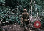 Image of 1st Air Cavalry Division Cambodia, 1970, second 15 stock footage video 65675021065