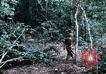 Image of 1st Air Cavalry Division Cambodia, 1970, second 20 stock footage video 65675021065