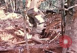 Image of 1st Air Cavalry Division Cambodia, 1970, second 42 stock footage video 65675021068
