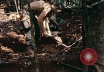 Image of 1st Air Cavalry Division Cambodia, 1970, second 49 stock footage video 65675021068