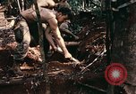 Image of 1st Air Cavalry Division Cambodia, 1970, second 50 stock footage video 65675021068