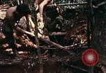 Image of 1st Air Cavalry Division Cambodia, 1970, second 53 stock footage video 65675021068