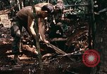 Image of 1st Air Cavalry Division Cambodia, 1970, second 54 stock footage video 65675021068