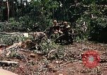 Image of 1st Air Cavalry Division Cambodia, 1970, second 39 stock footage video 65675021071