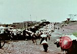 Image of American airlift of Vietnamese refugees Saigon Vietnam, 1975, second 2 stock footage video 65675021076