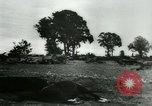 Image of German prisoners France, 1944, second 15 stock footage video 65675021090