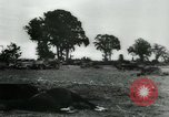 Image of German prisoners France, 1944, second 16 stock footage video 65675021090