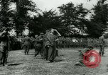 Image of German prisoners France, 1944, second 57 stock footage video 65675021090