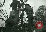 Image of Air crash Memphis Tennessee USA, 1947, second 15 stock footage video 65675021111