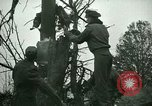 Image of Air crash Memphis Tennessee USA, 1947, second 16 stock footage video 65675021111