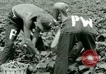Image of German Prisoner of War Camp in United States United States USA, 1944, second 31 stock footage video 65675021139