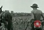 Image of Prisoner of War Camp Southern United States USA, 1944, second 5 stock footage video 65675021140