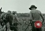 Image of Prisoner of War Camp Southern United States USA, 1944, second 6 stock footage video 65675021140