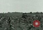 Image of Prisoner of War Camp Southern United States USA, 1944, second 14 stock footage video 65675021140