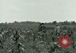 Image of Prisoner of War Camp Southern United States USA, 1944, second 15 stock footage video 65675021140